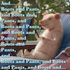27 Best Maxwell The Geico Pig Images In 2014 Pigs Tv Ads Tv