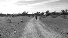 Desert near Quartzite, AZ