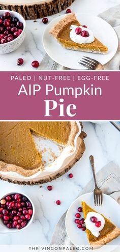 Just because you're on a healing diet doesn't mean you can't have a delicious, creamy pumpkin pie! AIP, nut-free, egg-free, Paleo, and amazing.