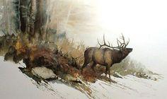 Morten E. Solberg - Autumn Challenge Elk