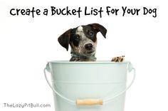 Create A Bucket List