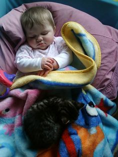 And when this little guy volunteered to keep his baby warm during nap time. | 31 Times Cats Made The World A Better Place