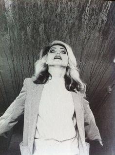 Wild in 1978