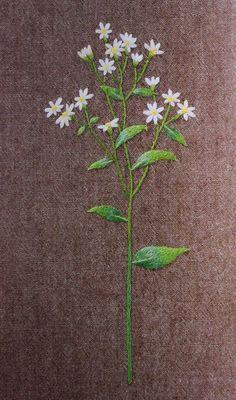 South Korea Wild Flower Embroidery