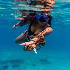 Unda the sea Pura Vida Bracelets x Thanks @gypsea_angel