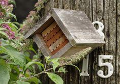 Mason Bee Habitat (Pollinators)