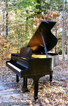 Baby Grand Piano in Forest http://pinterest.com/cameronpiano