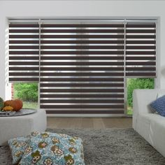curtain in living room photo coulisse roller shades window treatments drapes 20769
