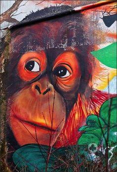 Orangutan art.