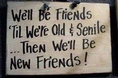 Funny friends Sign