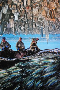 City Seafood, John Turck Collage