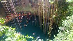 #cenote #ikkil #tour #relax #rivieramaya #caribe #caraibi #sol #sole #mar #mare #ff #playadelcarmen #playa #spiaggia #trasferirsi #messico #mexico #riviera #italia #limpio #vacaciones #vacanze www.playavintage.com