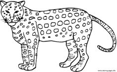 Image result for colorbook cheetah prints