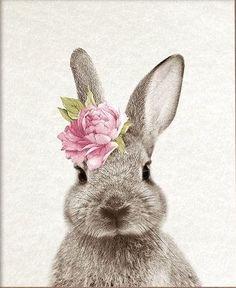 Hase drawings for kids Bunny Art, Cute Bunny, Lapin Art, Baby Animals, Cute Animals, Image Deco, Rabbit Art, Rabbit Drawing, Watercolor Art