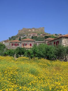 Castle above the town of Molyvos, Greek Islands, Greece