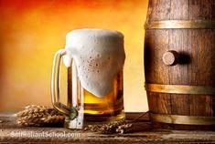 00281P-brew-beer-wine-homebrew