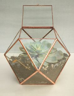 Copernicus ‹› Large Hinged Geometric Glass Terrarium ‹› Copper ‹› Lead-Free and Eco-Friendly ‹› Stained Glass Planter ‹› Valentine's Day