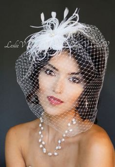 White Large Birdcage Veil & Feather Bridal Clip with Rhinestones 29-F67s-D