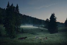 Summer Night in Finland - Photography Mikko Lagerstedt Amazing Photography, Landscape Photography, Nature Photography, Finland Summer, Night Aesthetic, Summer Memories, Summer Nights, Pretty Pictures, Scenery