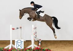 Whoever said horse riding wasn't a sport, never jumped this high! ^