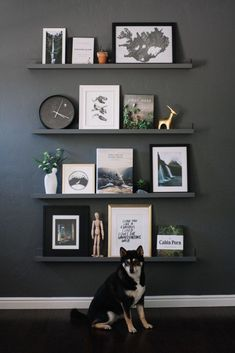 Hall Home Tour: Living Room Shelf Gallery Wall Minimalist, adventure themed shelf gallery wall Living Room Shelves, Living Room Decor, Bedroom Wall Decorations, Living Room Wall Shelves, Shelf Ideas For Living Room, Ikea Wall Decor, Hall Wall Decor, Shelf Decorations, Black Wall Decor
