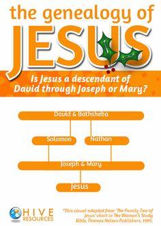 ... 17; Luke 3:23-38: Genealogy of Christ; Genealogy of Jesus Visual