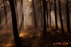 Divine Light by Frits Hendriks on 500px