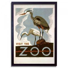 Affiche vintage Birds at Zoo