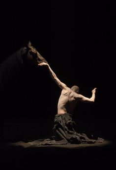 http://www.bartabas.fr/fr/Bartabas/spectacles-5/Le-centaure-et-l-animal
