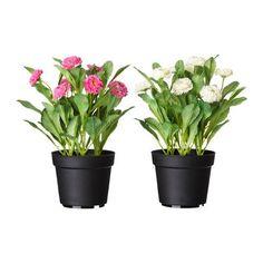 IKEA - FEJKA, Planta artificial en maceta, Tiene la misma frescura que una planta natural y conserva su belleza año tras año.Es ideal si no puedes tener plantas naturales, pero quieres disfrutar de la belleza de la naturaleza.