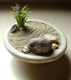 peaceful zen garden concrete planter and air plant