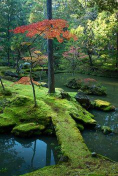 Autumn serenity.