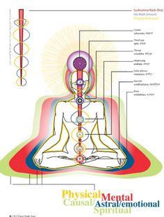 Nadis, les canaux de force Life Energy – Lumières Fractal