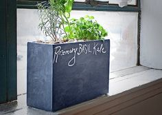 Small Space Gardening: Indoor Hydroponic Planter for Herbs, Flowers, and Produce