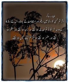 Reality Quotes, Life Quotes, Best Urdu Poetry Images, Urdu Thoughts, Islamic Quotes, Novels, Deep, Adventure, Quotes About Life