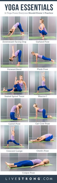 The 11 Must-Know Yoga Poses (INFOGRAPHIC) | LIVESTRONG.COM
