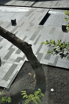 coyoacan-corporate-campus-by-dlc_architects-24 « Landscape Architecture Works | Landezine: