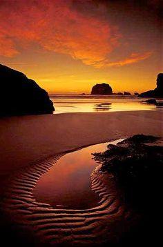 beach in Bandon State Natural Area, Oregon. Photo: Mark Rasmussen (winner in the 2004 National Wildlife photo contest)