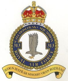"""313_wing_motto_""""One hawk dozens crows scatter"""" Military Cap, Military Insignia, The Spitfires, Battle Of Britain, Nose Art, Royal Air Force, Floral Border, Luftwaffe, Rare Photos"""