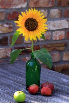 Late Summer Flowers, Fall Flowers, Pretty Flowers, Colorful Flowers, Summer Flower Arrangements, Fall Arrangements, Flower Vases, Sunflower Vase, Making A Bouquet