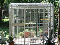 "86x62 Walk in Parrot Cage Aviary - Centurion Cages. 1"" bar spacing Color: PLAT #CenturionCages"