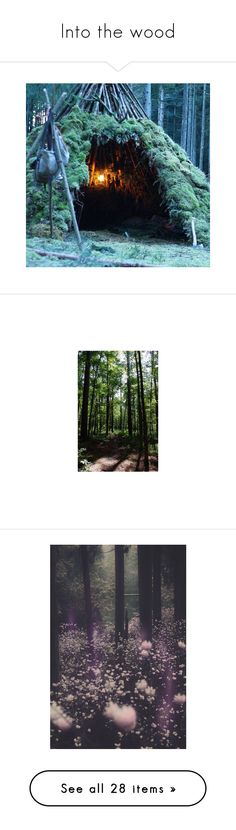 """Into the wood"" by bambolinadicarta-1 ❤ liked on Polyvore featuring backgrounds, images, pic, home, home decor, purple, photos, purple home decor, forest home decor and polaroid"