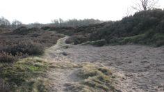 Winter bij Orvelte Drenthe 2011