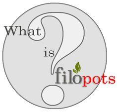 Πληροφορίες και συμβουλές για τα φυτά Μαράντα και Καλαθέα