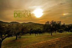 Atardecer en la Dehesa de Extremadura by felixbernet  http://luzdomada.com/2012/06/atardecer-dehesa-extremadura/