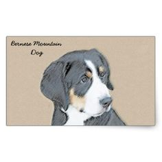 #Bernese Mountain Dog Puppy Rectangular Sticker - #bernese #mountain #dog #puppy #dog #dogs #pet #pets #cute #bernesemountaindog