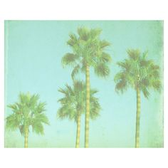 VIntage Palm Tree Beach Print - Blue Green Retro Tropical Ocean Beach... ($25) ❤ liked on Polyvore
