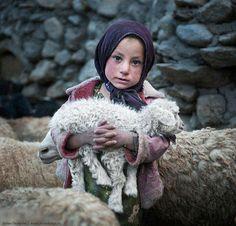 ...had a little lamb - Pakistan