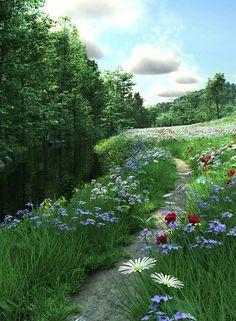 A lovely little path...