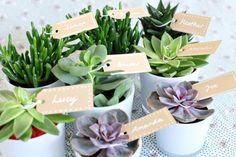 Eco-chic green wedding details -  